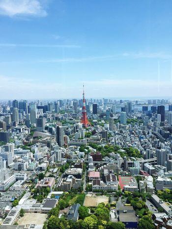 六本木ヒルズのSTAR WARS展がやっているフロアから。景色が最高でした! Tokyo Japan City 東京タワー 東京