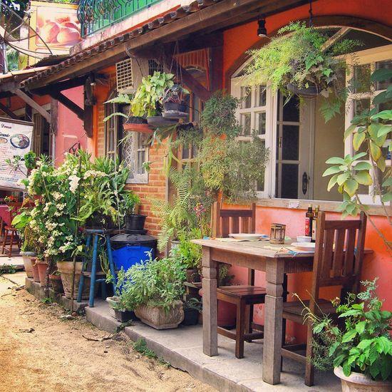 Short break... Brasil ♥ Brasilien Insel Island Planzen Blumen Plants Flowers Table Chairs Stühle Tisch Breaking Abschalten Haus House