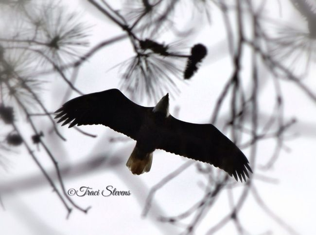 EyeEm Best Shots - Nature EyeEm Nature Lover EyeEm Best Shots Impossible Moments