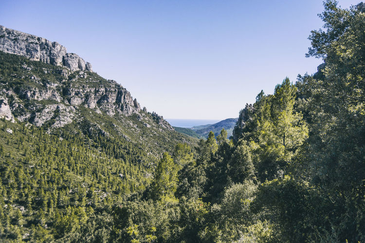 View from the top of a mountain in catalonia. photograph with space for text
