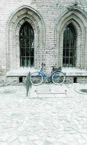 Taking Photos Road Bike Enjoying Life Art & Design Modern Style Minimalism Oldfashion Aquatic Life