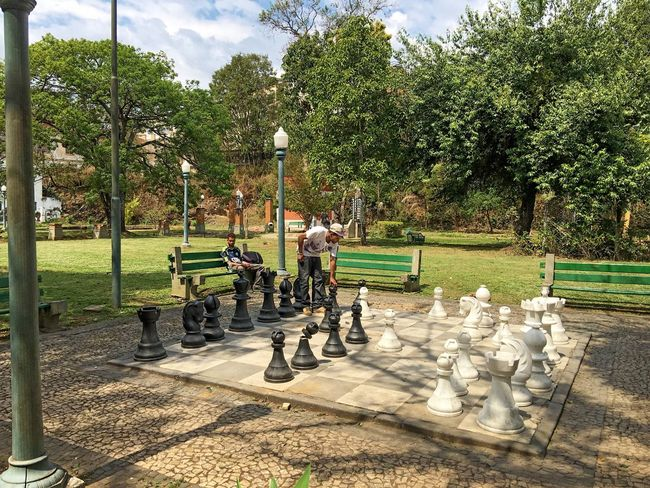 Eyeing the next move... Tree Park - Man Made Space Street Light Full Length Playing Day Park Bench Growth Sky Green Color Person Outdoors Nature Park Hobbies Tranquil Scene Footpath Tranquility Garden Chess Strategy