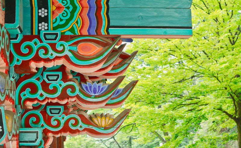 Beautiful design on a temple in Mt. Dobong in South Korea Tree No People Multi Colored Decorative Art Art South Korea Templephotography Building Exterior Culture Of South Korea Design Pattern
