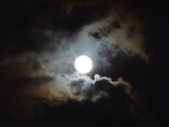 """Tropical moonglow"" Astronomy Atmosphere Bright Cloud Cloudscape Cloudy Cloudy Dark Glowing Moon Moonglow  Moonlight Nature Night No People Overcast Sky Weather White Moon"