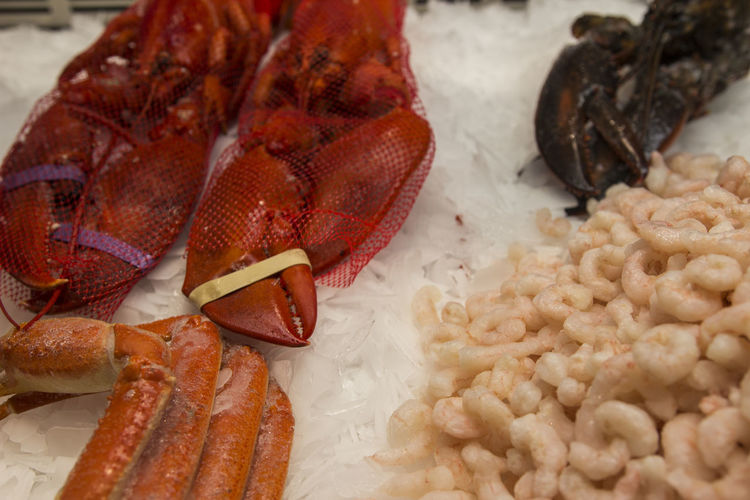 Seafood in a