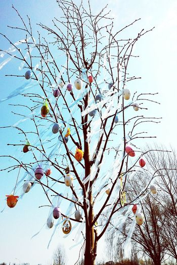 Easter Happy Easter Handmade Easter Eggs Easter Sunday Easter Tree