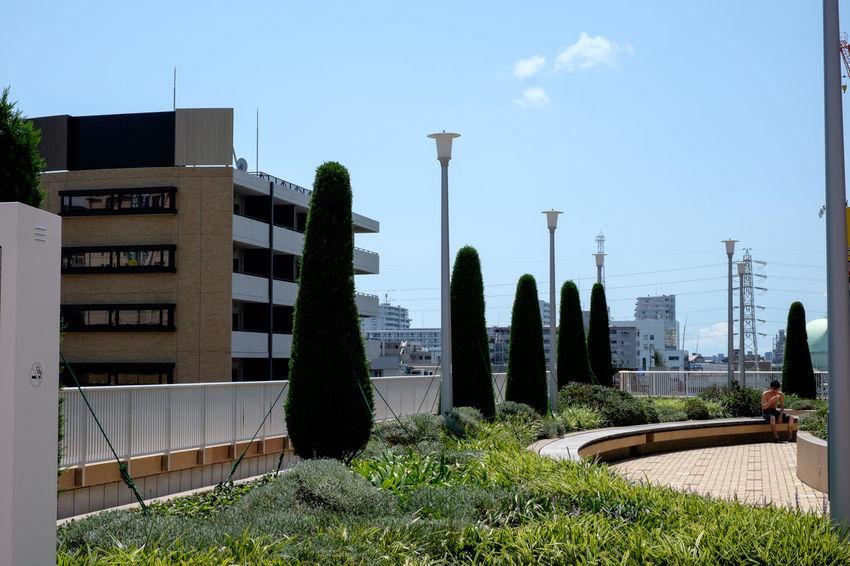 市川駅南口 Architecture Built Structure City Fujifilm Fujifilm X-E2 Fujifilm_xseries Ichikawa Japan Sky Station Xf35 Xf35mm 市川 市川駅南口 日本