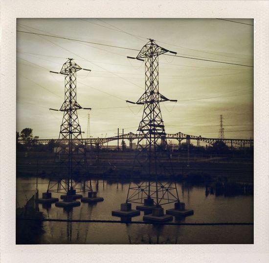 Meadowlands -
