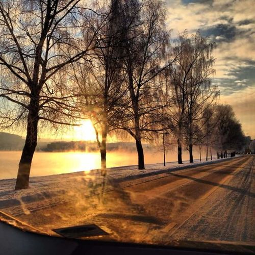Early morning in my beautiful hometown Porsgrunn ❤️ EyeEmNewHere Drivinghomeforchristmas Sunset Iceroad EyeEm Selects Tree Bare Tree Sunset Road Dawn Winter Sunlight Sky Landscape Cloud - Sky Foggy Empty Road Dramatic Sky Romantic Sky Car Point Of View Calm Tranquil Scene