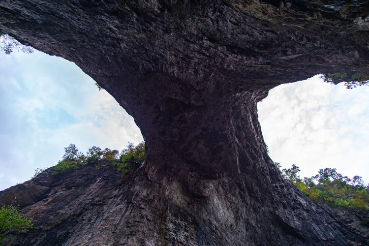 Always look up Lookingup Wide Angle View From Below Natural Bridge  Natural Bridge, Virginia Tree Mountain Accidents And Disasters Eroded Geology Rock Formation Rock Natural Arch Physical Geography Natural Landmark Rugged