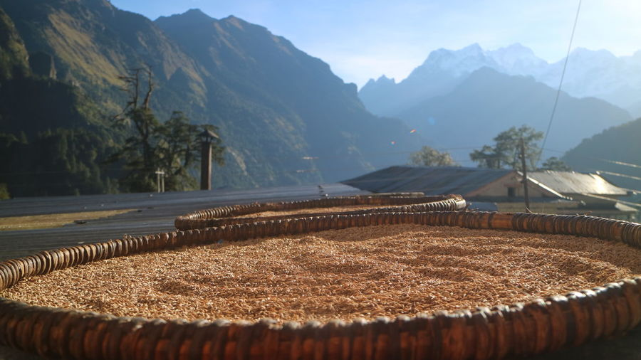 Mountain Day Nature Beauty In Nature Mountain Range Plant Sunlight No People Food Food And Drink Agriculture Freshness Scenics - Nature Outdoors Landscape Rural Scene Container Focus On Foreground Farm Non-urban Scene Sun Drying