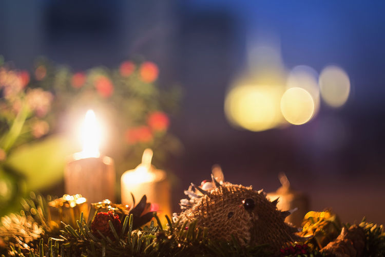 Advent is coming... Advent Budapest Budapest, Hungary Burning Candle Christmas Enjoying Life Eye4photography  EyeEm EyeEm Best Edits EyeEm Best Shots EyeEm Gallery EyeEm Nature Lover Flame Home Hungary Illuminated Indoors  Lifestyles Love Night No People Relaxing Snow Winter