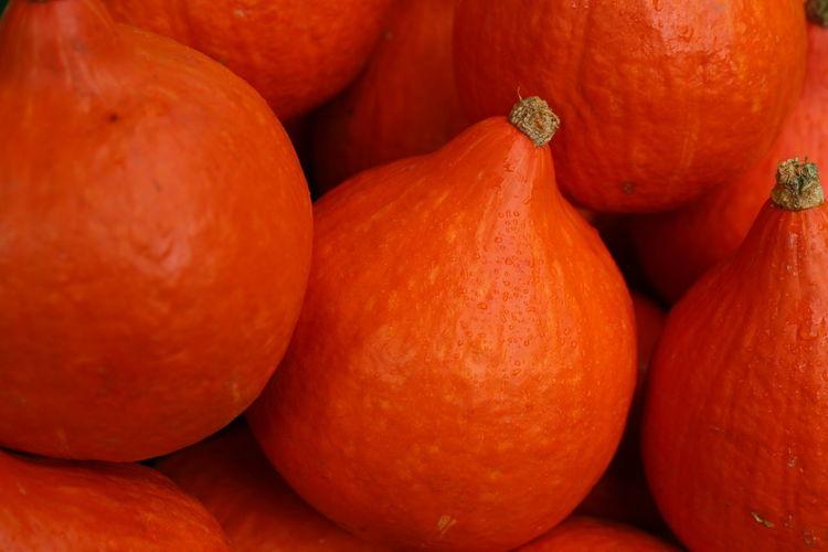 Full frame close-up of pumpkins