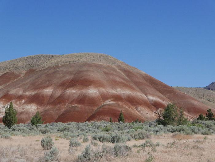 Painted Hills Desert Geological Formation Geological Landscape Geology Mountain Nature Oregonexplored Scenics