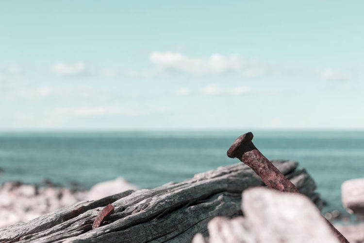 The wreck Swiks at the northern tip of Öland, Sweden Coastline Drastic Edit Sweden Water's Edge Wreck Beach Beauty In Nature Broken Close-up Damaged Day Driftwood Horizon Over Water Log Nature No People Old Outdoors Rusty Scenics Sea Sky Water Wood - Material Öland