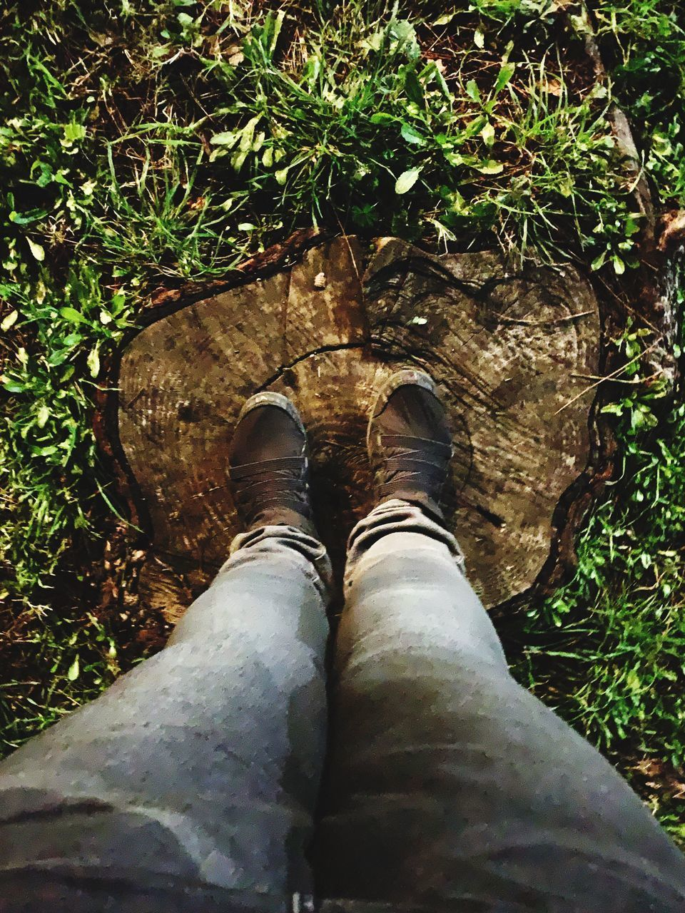 personal perspective, low section, human leg, shoe, body part, human body part, one person, plant, real people, nature, day, high angle view, land, human foot, outdoors, growth, lifestyles, leisure activity, directly above, jeans, human limb