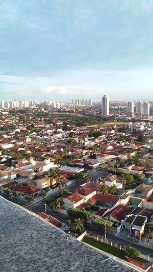 My city. Cyti