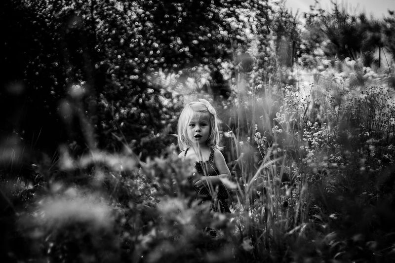 Girl in grass. Childhood One Person Tree Portrait Child Looking At Camera Nature Growth Outdoors Day Children Only Young Adult People Blond Hair Close-up