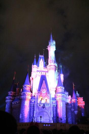 👸 💕 💕 💕🤴 TDL Tokyo,Japan Cinderella So Cute Night LastYear