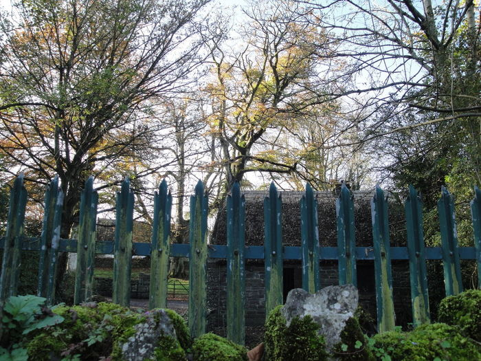 Day Fence