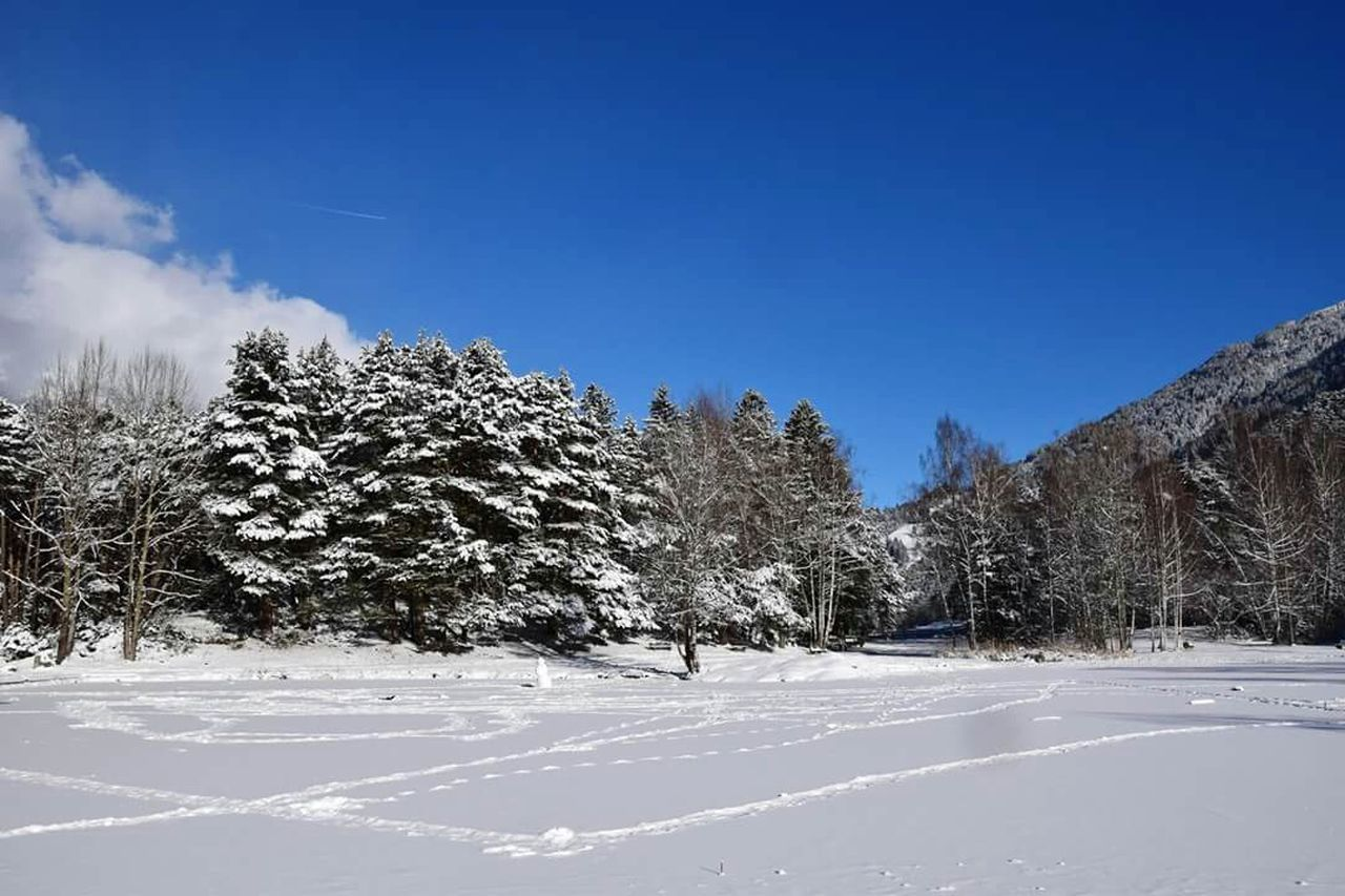 snow, cold temperature, winter, white color, nature, tree, tranquility, tranquil scene, weather, beauty in nature, no people, scenics, frozen, outdoors, day, landscape, mountain, blue, sky