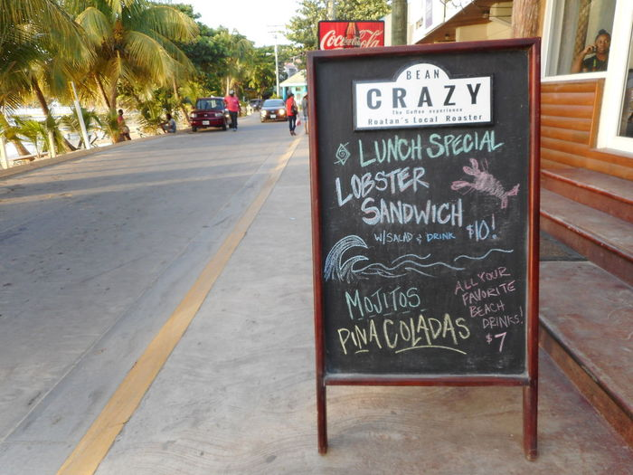 Honduras Roatan Bay Islands Blackboard  Cafe Close-up Communication Day Food And Drink No People Outdoors Restaurant Text Tree Western Script