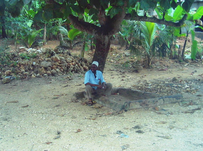 2006 Day Ground Hut Lifestyles Man Nature One Person Outdoors Real People Sitting Under A Tree Tree Tree Zanzibar