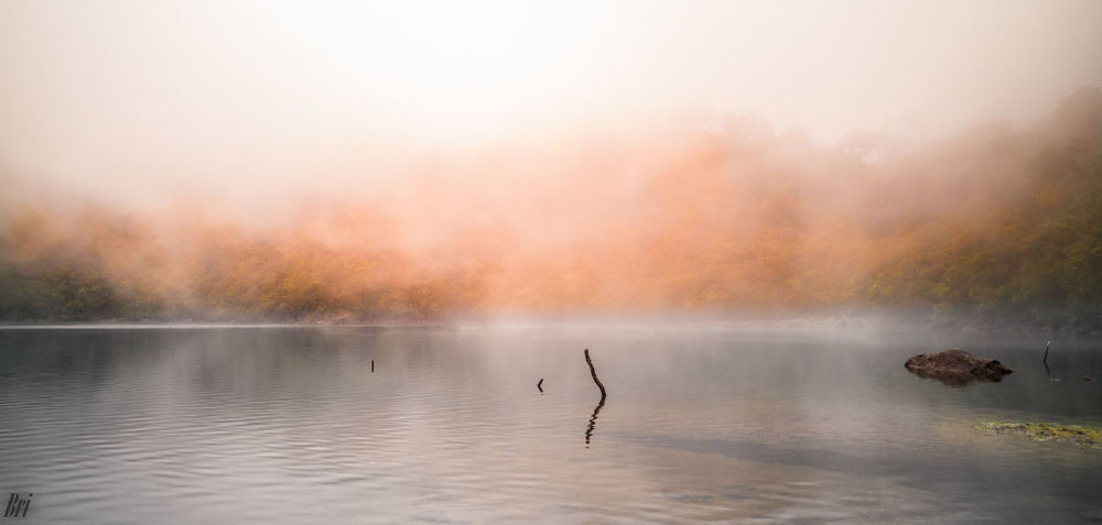 Nailig lake Water Nature Outdoors Sunset No People Animal Wildlife Beauty In Nature Lake Day Scenics Bird Flamingo Sky