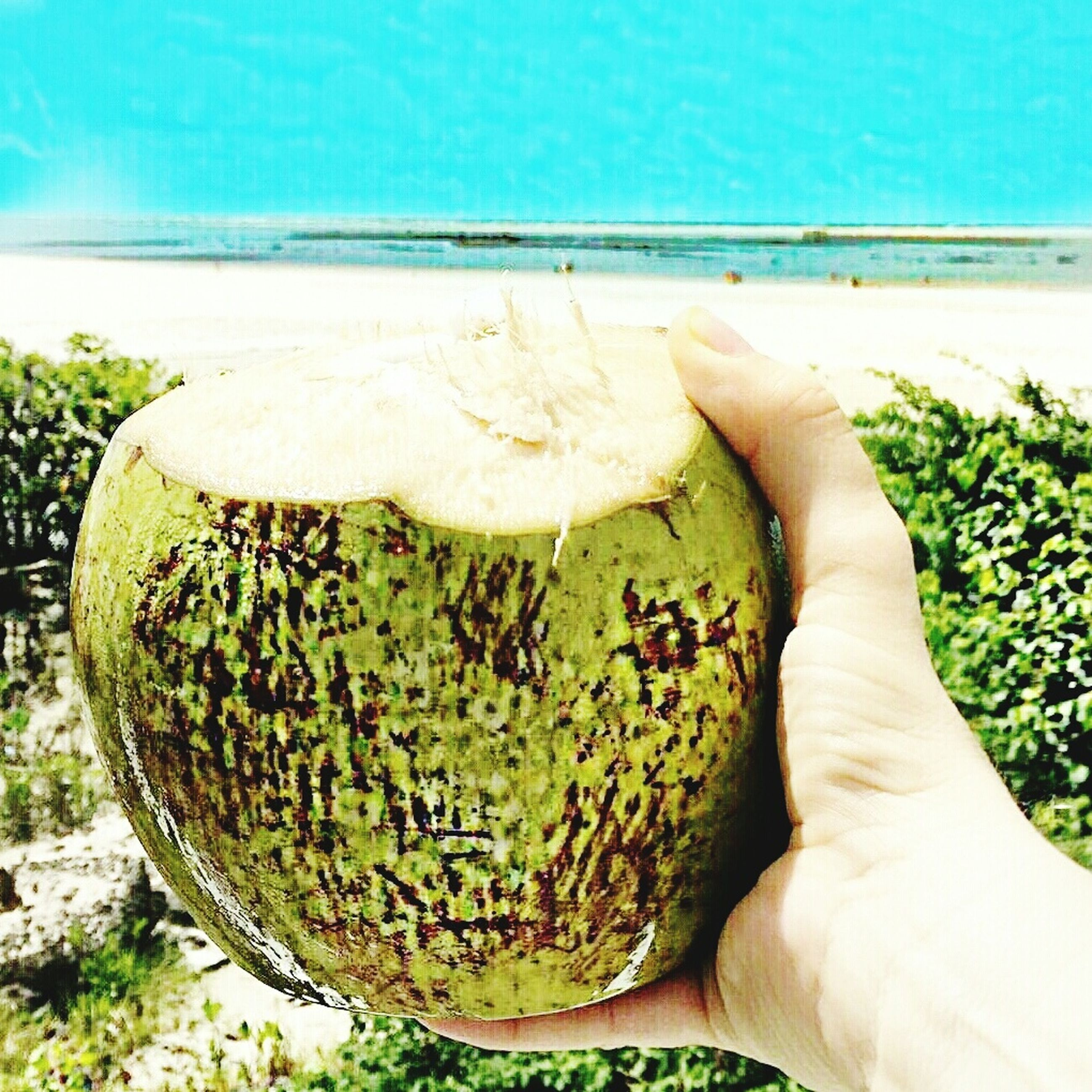 sea, human hand, horizon over water, human body part, one person, food and drink, sunlight, real people, nature, freshness, water, day, food, outdoors, sky, close-up, beauty in nature, coconut, beach, healthy eating