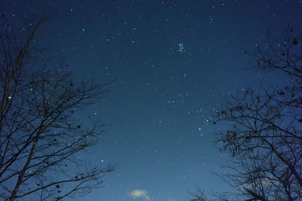 Night No People Pleiades Star