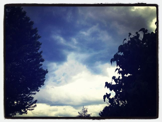 Scary Sky
