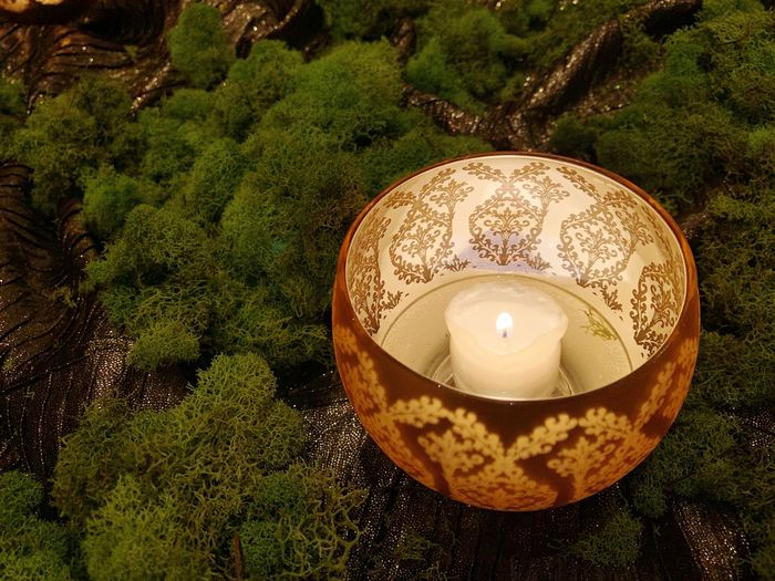 IPhoneography High Angle View Candle Burning Illuminated Fire Flame Lighting Equipment No People Nature Plant Close-up Fire - Natural Phenomenon Glowing Tea Light Decoration Shape Green Color