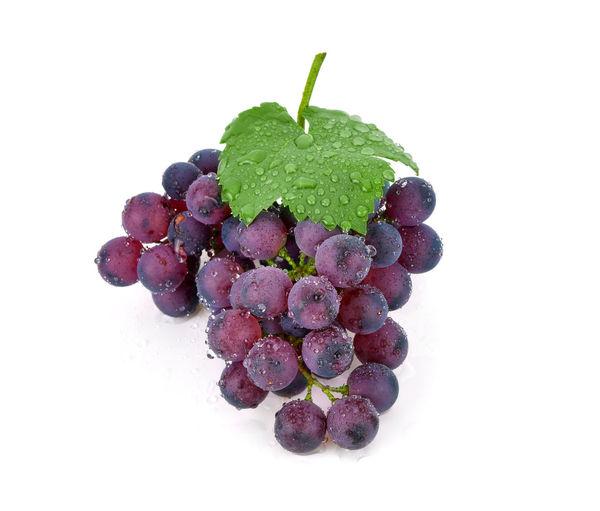 Grape Grapes