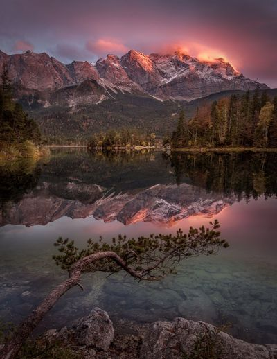 Germany Eibsee Zugspitze Reflection Viewpoint Silence Feeling See Abendstimmung Sunset Aussicht Zugspitze Eibsee Water Sky Beauty In Nature Scenics - Nature Mountain Reflection Lake Plant Idyllic Mountain Range Tree Cloud - Sky Nature Tranquility Tranquil Scene Outdoors EyeEmNewHere