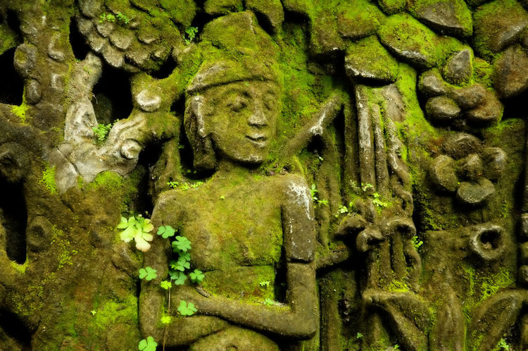 Indonesia, Bali, Ubud, Agung Rai Museum of Art - ARMA, stone images covered by green moss and small plants Agung Rai Museum Arts And Crafts Bali, Indonesia Bas-relief Covered Green Color Horizontal INDONESIA Moss Ubud, Bali