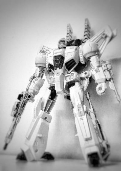 Black & White Fighter Robot White Black Structure View Built Structure