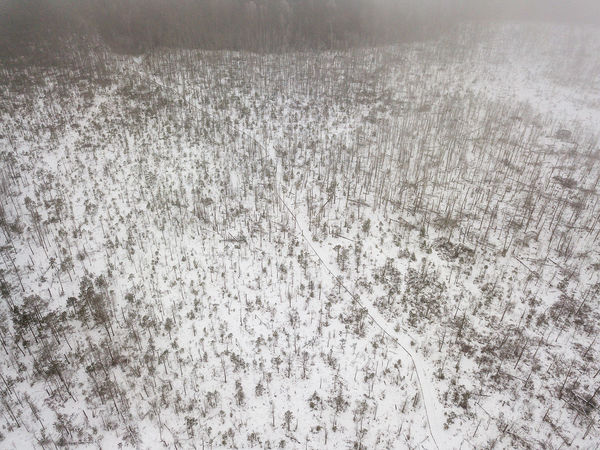 Winter walking path Drone  Backgrounds Beauty In Nature Close-up Cold Temperature Day Explore Nature Field Grass Growth Landscape Nature No People Outdoors Snow Walking Walking Path Winter Winter Wonderland