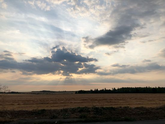 Morning #MobileSky #sky #clouds #shotoniphone #sun Cloud - Sky Sky Tranquil Scene Tranquility Landscape Beauty In Nature Scenics - Nature Day Outdoors Sunlight Rural Scene Agriculture No People Environment Field Land Nature
