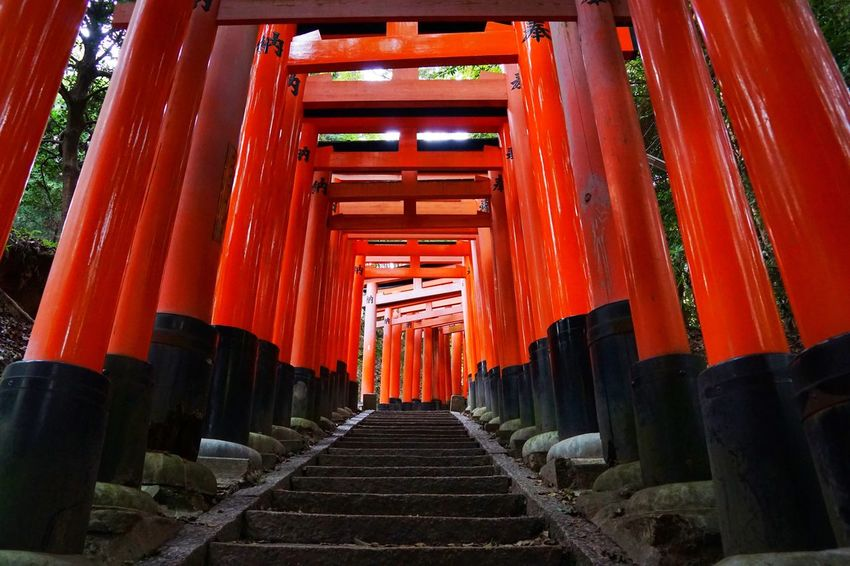 Torii Gates Torii Gate TORII Tori Red The Way Forward Architecture No People Day Indoors