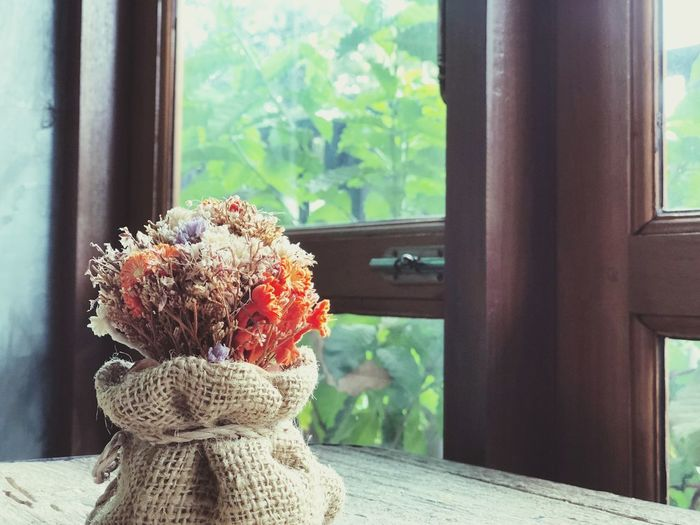 Morning sunlight through the window Sack Bag Window Indoors  No People Close-up Art And Craft Plant Day Flower Glass - Material Curtain Nature Window Sill Transparent Representation Focus On Foreground Still Life Craft Textile Window Frame