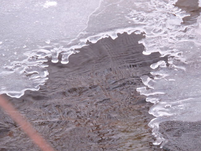 Beach Beauty In Nature Close-up Day Flowing Stream Ice Lacework Nature No People Outdoors Sand
