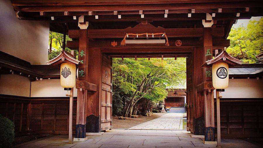高野山 一乗院 Koyasan Green Color Enjoying Life Hello World Relaxing Koyasan Japan 2015  本王院
