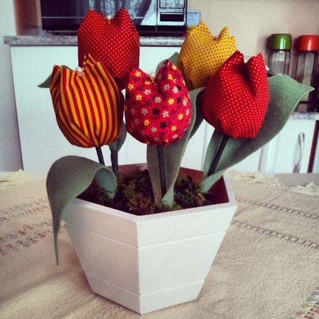 Tulipas Tulip