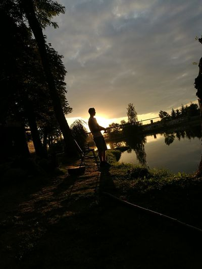 Fishing Tree Silhouette Lake One Person Sky People Sunset Water Adult One Man Only Outdoors Day