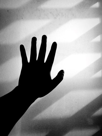 Human Hand Shadow Palm Human Body Part Human Finger Window Sunny Day Blackandwhite Black And White Black & White Blackandwhite Photography Black And White Photography Black&white Blackandwhitephotography Black And White Portrait The Week On Eyem Indoors  Light And Shadow Real People Women Day People Close-up Adult Adults Only