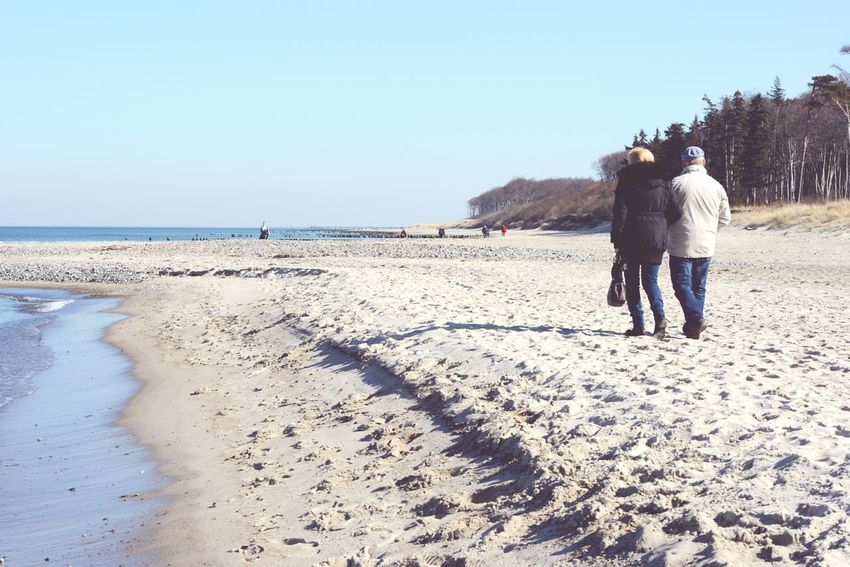 Couple walking along Baltic Sea landscape of Darss peninsula (Mecklenburg-Vorpommern, Germany) in springtime. Baltic Sea Baltic Sea Winter Beach Darß Darß Dunes Germany Landscape Leisure Activity Mecklenburg-Vorpommern Men Ocean Person Sand Shore Tourism Tourist Water