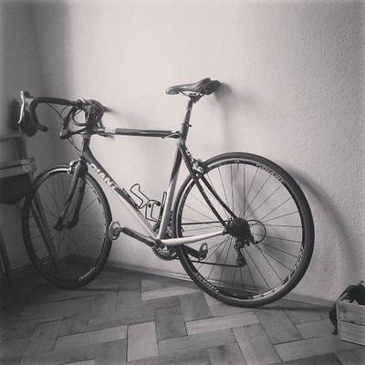 Oder besser aufhängen? Wenn ja, welche Halterungen könnt ihr empfehlen? Instasport Fromwherewebike Instabike Cycling strava