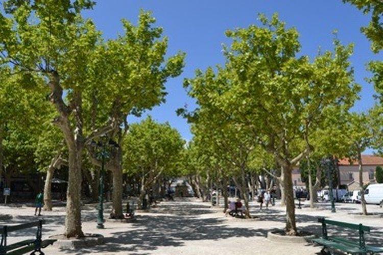 Place De Lices