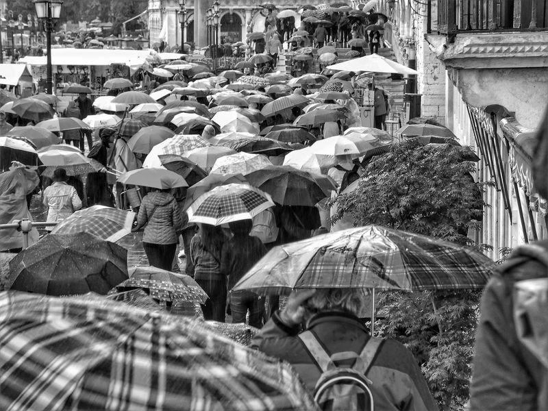 Venice Streetphotography Street Umbrella Urban Rain Blackandwhite People Men City Crowd Street Scene RainDrop Monsoon Torrential Rain