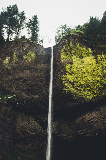 Beauty In Nature Day Forest Freshness Growth Low Angle View Motion Nature No People Outdoors Scenics Tranquility Tree Water Waterfall